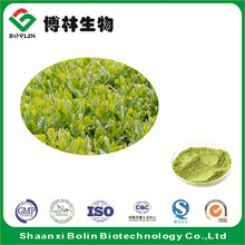 Natural Matcha Green Tea Powder for Ice Cream Additives