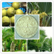 saw palmetto extract powder/sale of saw palmetto powder extract/hair loss saw palmetto