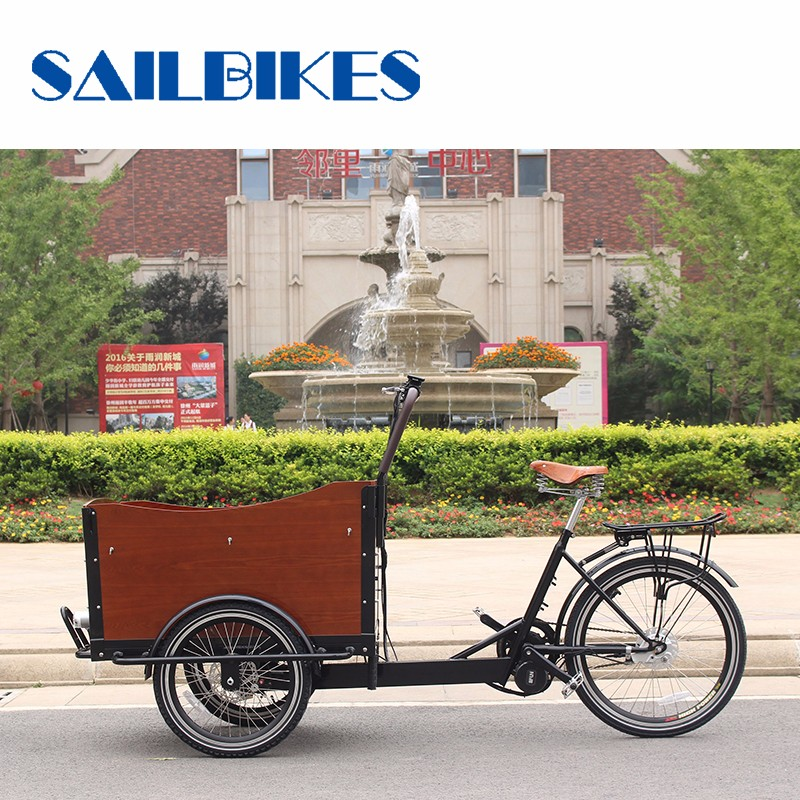 Original Manufacture 3 Wheel Electric Cargo Bike Tricycle For Children