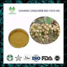 Cuscuta chinensis Extract Dodder Seed Extract powder