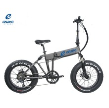 Enwe 2017 Eletric Bike E Bicycle Pocket Bike with Front and Rear Suspension for Adults