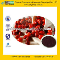 Cranberry Fruit Extract Powder from GMP Certified Factory