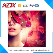 Hot Sell Landscape Custom 3D Lenticular Flip Effect Picture For Wedding Photos,Baby Photos And Photography Enthusiasts