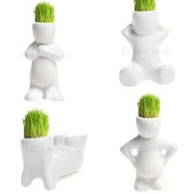 4 shape Choose DIY Mini Novel Bonsai Grass Doll Hair White Lazy Man Plant Garden-Y102