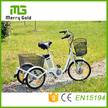 Cost efficient 250w brushless motor small 20'' Adult Electric Tricycle