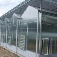 Large Size 100 Agricultural Polycarbonate Greenhouse