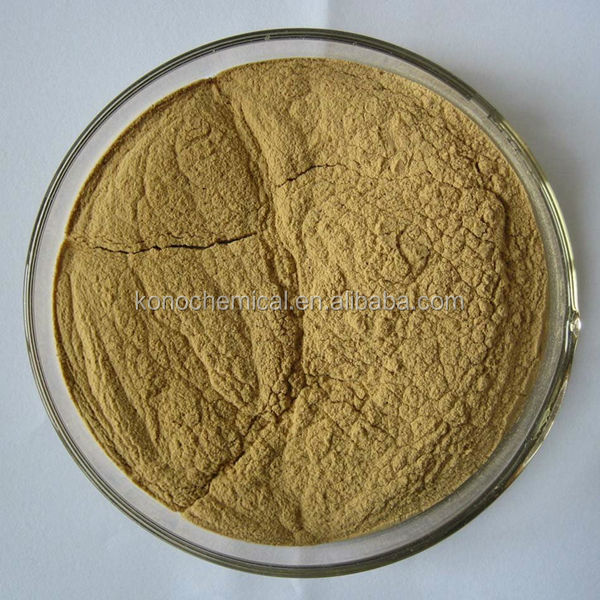 High Quality Angelica Root P.E