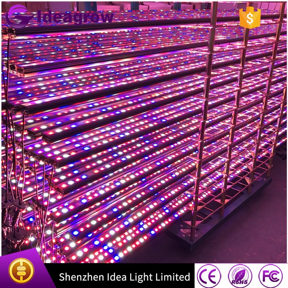 Ideagrow waterproof led grow light strip, All Red 660nmblue 460nmWhite customized wavelength hydroponic led grow light (3).jpg