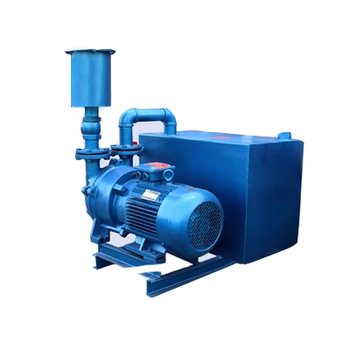 vacuum pump dc compressor hvac tools liquid water ring cast iron made in China high quality for wholesale