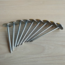 Hot ! nails manufacturer supply galvanized umbrella head roofing nail factory price in china