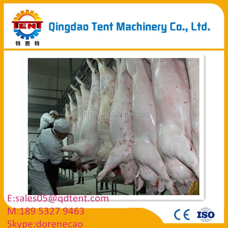 Cheap pig meat slaughtering