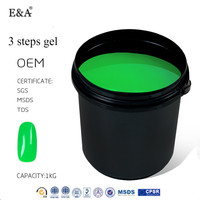 EA 210 colors 3 in 1 gel polish 1kg bulk nail polish uv gel