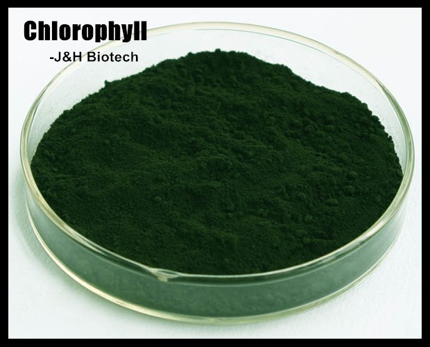 100% natural Sodium Copper Chlorophyll (pigment) for edible
