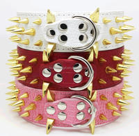Wholesale high quality gold spiked 2 inch dog collar for large dog