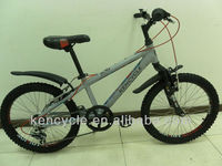20 inch 6 speed mountain bike/bicicleta/dirt jump bmx/andnaor para crianca (SY-MB2049)