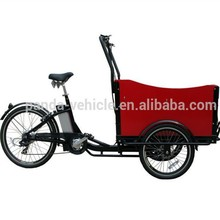 Hot sale high quality family 3 wheel trike car/recumbent electric triker for sale