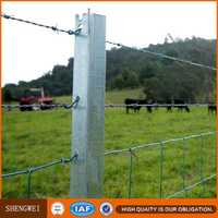 High Quality steel cattle t fence post/t bar fence post
