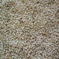 sesame seed buyers