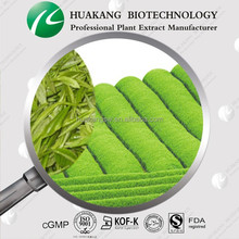 100% Natural Green Tea Extract Powder 50%EGCG HPLC Tested