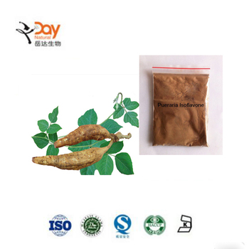 Manufacturer Pueraria Lobata Flower Extract Powder