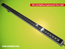 2013 quiet fan less led grow light, led strip wall washer light for supplementary