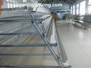 A type poultry layer cages