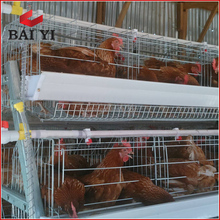 Layer Chicken Cages For Nigeria Poultry Farm