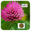 HPLC 8% 20% 40% isoflavones BAP <10PPB total PAHs <50PPB red clover extract