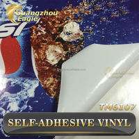 Self Adhesive Vinyl With White Glue /Outdoor Printing Decorative Film For Car