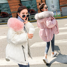 ZH0246F Korea style woman cotton padded big feather collar waist winter down jacket