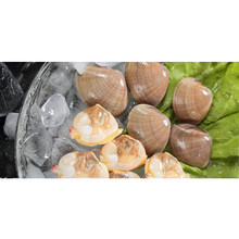 Cheap Seafood Shellfish Delicious 100% Wild Safety Healthy Clam Meat