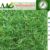 AAG Landscape grass Artificial Turf Best Quality