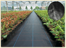 agrotextile pp woven geotextile mat ground cover /agrotkanina against weeds/anti-weed mats in the gardening