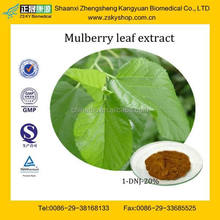 GMP Manufacturer Supply High Quality White Mulberry Leaf Extract Powder