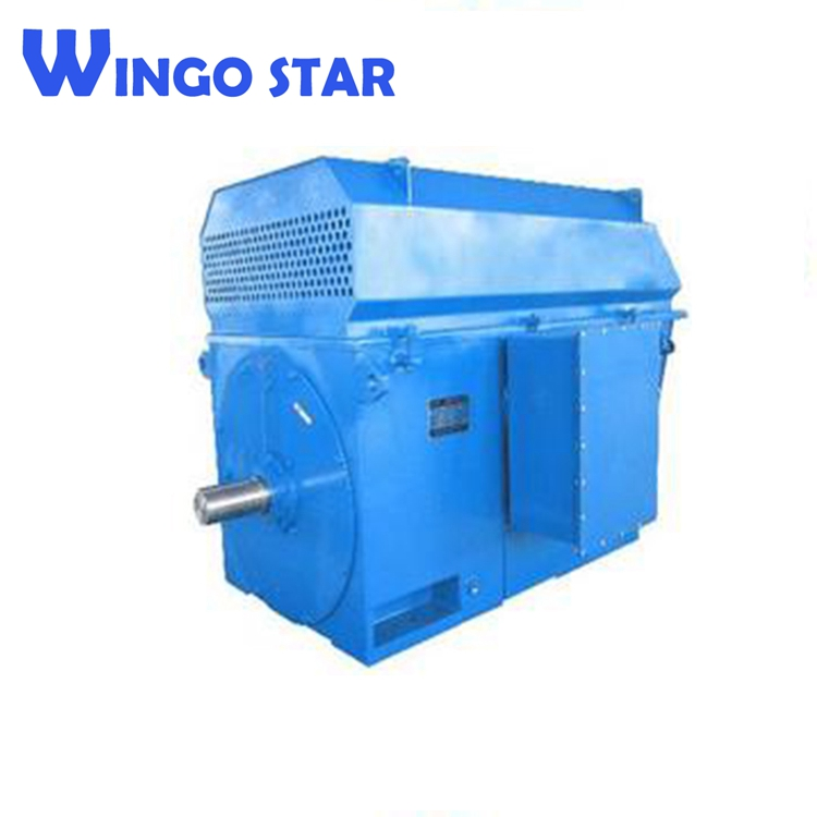 185kw high voltage y series three phase electric motor