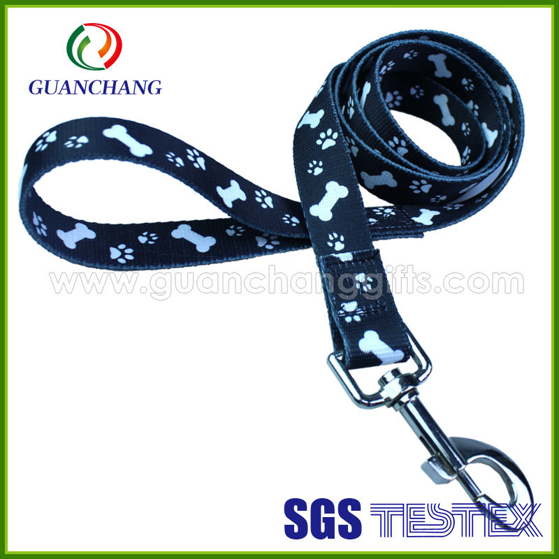 fashion smart China cool pet dog leash