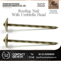 3-inch umbrella head brass roofing nail promotion