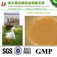 feed additives Active feed dry yeast , feed additives, good quality Poultry feed additives
