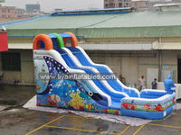Promotional Giant Inflatable Water Slide,10m Length Water slide with pool