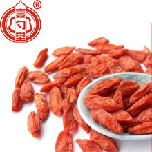 Organic goji berries wholesale in Ningxia China