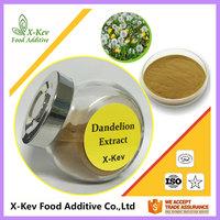 10:1 Natural Dandelion Root Extract Powder For Dandelion Root Tea