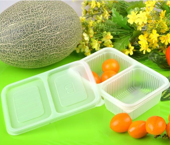 Biodegradable Eco friendly lunch takeaway containers 2 part with lid