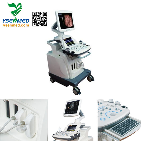 YSB8000P Hospital Mobile Advanced 4D High Quality Color Doppler Ultrasound Scanner Machine With Touch Screen