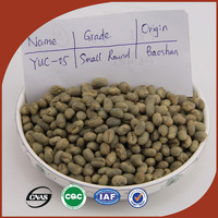 wholesale selected unroasted green coffee beans