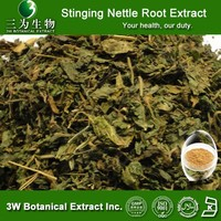 3WBE- Stinging Nettle Root Extract, Stinging Nettle leaf Extract,Stinging Nettle Root Extract powder