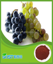 Wholesale Sell grape seed extract alcohol 95