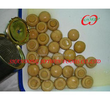 2014 new crop fresh hot sell canned mushroom whole sliced
