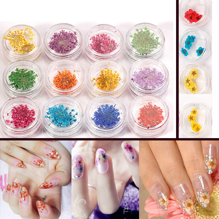 12pcs each box Dried dry Flower UV Gel Acrylic False Nail Art Designs Real Flower
