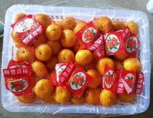 Fresh mandarin <strong>oranges</strong> from Jiangxi nanfeng