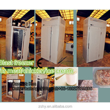 Blast chiller / quick chiller / Shock chiller